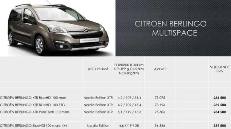 Citroën-Berlingo-Multispace